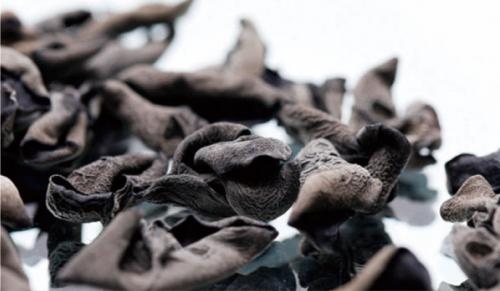 太仓Black Fungus