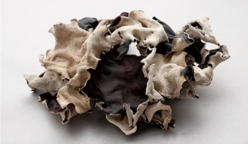 天津Black Fungus